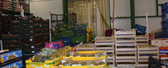 Polmar Hurtowania Warzyw i Owoców