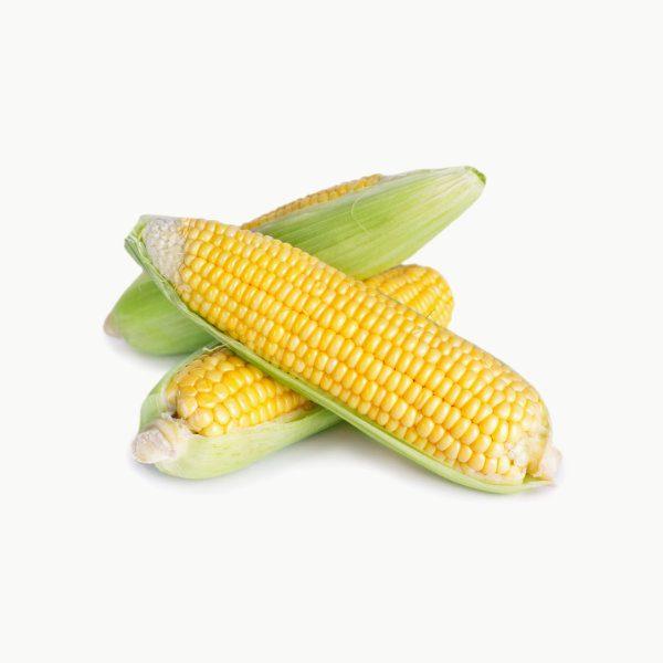 kukurydza sprzedaz