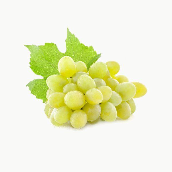 winogrono sprzedaz